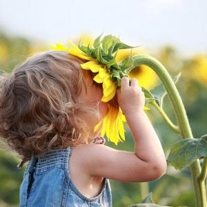 Фотообои 14-43 Детский Мир