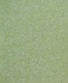 Обои 419-03 акриловые на бумажной основе