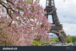 Фотообои Город 53192641 Эйфелева башня
