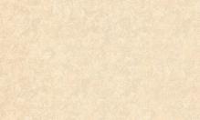 Обои ВЕРСАЛЬ 6021-81 флизелиновые (10,05*1,06)
