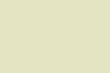 Обои ВЕРСАЛЬ 6022-85 флизелиновые (10,05*1,06)