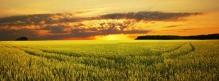 Фотообои Панорама 7-038