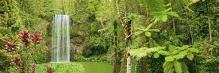 Фотообои Панорама 7-055
