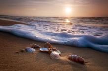 Фотообои 9-045 Море, Пляж