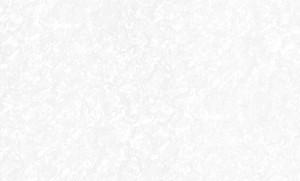 Обои Мегаполис 9097-10 виниловые на флизелиновой основе (1,06х10,05м) белые