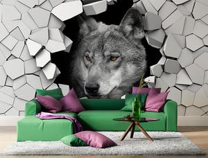 Фотообои Волк 11201